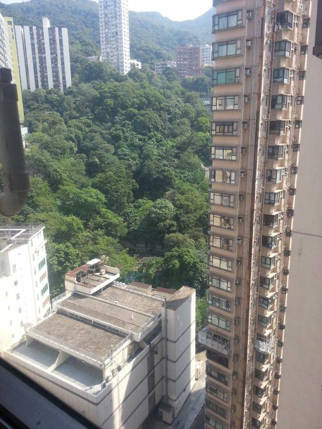 flatbreaad,Kennedy Town,Hong Kong Island